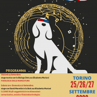IL CANE IN 3D - David Morettini & Elisabetta Mariani all'Arca!
